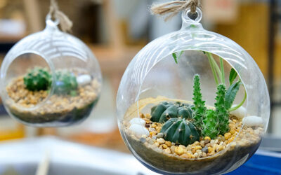 Jak ochronić rośliny przed pupilami